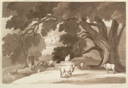 Landscape with well and cattle, Bihar